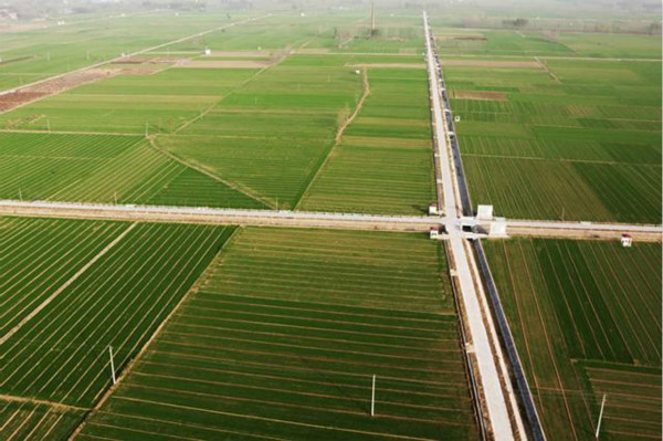 农业农村部 财政部发布2020年重点强农惠农政策
