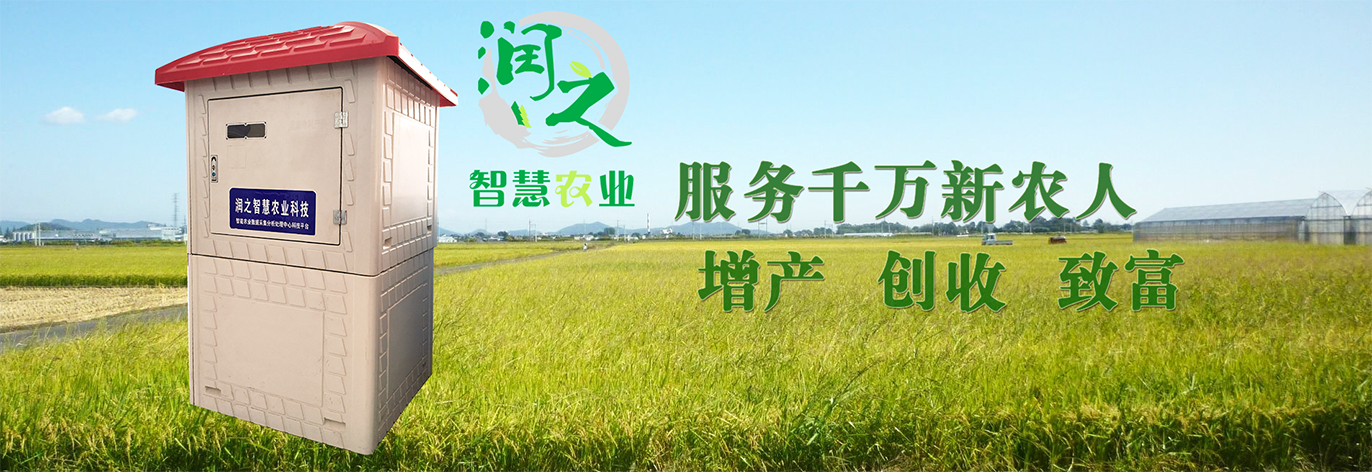 自动灌溉控制器